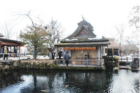 日本【交通票】JR关西地区铁路周游券【适用于京都、大阪、神户、奈良及姬路等地区】