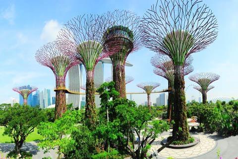 <新加坡5天>环球影城-滨海湾花园-河川生态园