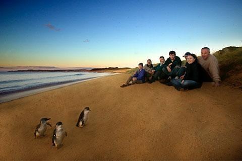 澳大利亚 墨尔本 悉尼 凯恩斯 布里斯本 黄金海岸-【尚·深度】澳洲(悉尼、凯恩斯、布里斯本、黄金海岸、墨尔本)12天*纯玩*亲子*广州或香港往返<树顶漫步,大堡礁,企鹅岛,海豚岛,主题公园>