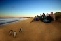 【尚·深度】澳洲(悉尼、凯恩斯、布里斯本、黄金海岸、墨尔本)12天*纯玩*亲子*广州或香港往返<树顶漫步,大堡礁,企鹅岛,海豚岛,主题公园>