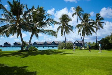马尔代夫(香格里拉岛)6天*机+酒*广州或香港往返