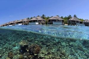 海岛-【自由行】马尔代夫(都喜天阙岛)5天*机+酒**广州往返*等待确认<免费wifi、中文服务、内陆飞机、快艇上岛>