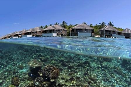 马尔代夫-【自由行】马尔代夫(都喜天阙岛)5天*机+酒**广州往返*等待确认<免费wifi、中文服务、内陆飞机、快艇上岛>