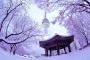 【乐·休闲】韩国首尔4天*超值*特惠*深圳往返<普罗旺斯小镇,汉江游船,广藏市场>
