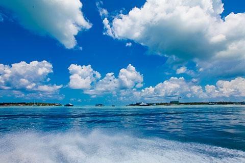 马尔代夫-【自由行】马尔代夫(悦椿庄海龟岛)6天*机+酒*广州/香港往返*等待确认<免费wifi、中文服务、SPA、内陆飞机+快艇上岛/水上飞机>