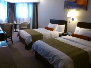 列支敦士登-香港马哥孛罗太子酒店