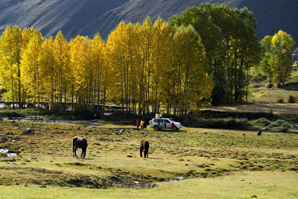 【原创】亲身体验!滇藏最经典玩法,大理、丽江、香格里拉、布达拉宫经典行程大作