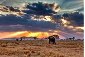 """列支敦士登-肯尼亚+坦桑尼亚+桑岛 12天9晚""""春节·浪漫之约"""""""