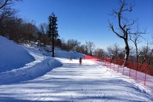 东北滑雪-【东北当地玩乐】长白山万达度假区雪国列车活力四人间体验6天游(沈阳往返)