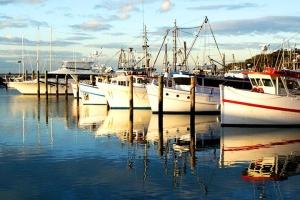 列支敦士登-悉尼史蒂芬港出海赏豚与四驱车滑沙1天游.等待确认