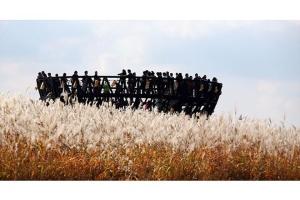 首尔-【龙马乐园怀旧之旅】首尔自由行 广州往返 5天 大韩航空 龙马乐园 附送一晚豪华酒店。等待确认