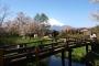 【佛山】日本5天*富士山*东京亚冠联赛助威之旅*等待确认