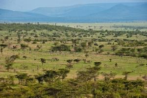 肯尼亚-【誉·博览】肯尼亚、赞比亚、博茨瓦纳、津巴布韦12天*奢野之旅*维多利亚瀑布酒店*直升机俯瞰三角洲*马赛马拉动物追踪<BOMA非洲美食歌舞派对>