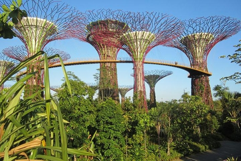 新加坡 新加坡-【尚·深度】新加坡5天*美食*心想狮城<优质航空,米其林星级餐厅,环球影城、SEA海洋馆,滨海湾花园,河川生态园>