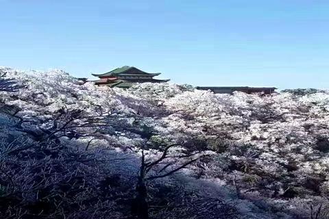 湖南郴州高铁3天*踏青徒步