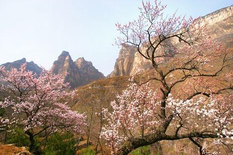 林州红旗渠太行大峡谷踏春赏花双飞4日游