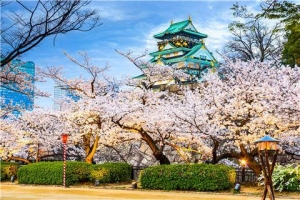 日本-【尚·深度】日本本州6天*赏樱特辑*广州往返<京都赏樱>
