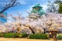 【尚·深度】日本本州深度6天*赏樱限定<京都赏樱,京都汤豆腐料理,黑毛和牛>