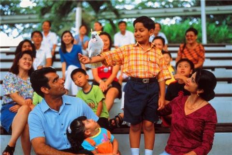 新加坡-【新加坡当地一日游】飞禽公园+日间动物园+夜间动物园