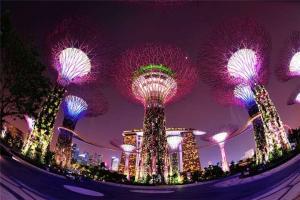新加坡-【新加坡当地景点门票】滨海湾花园花穹和云雾林门票
