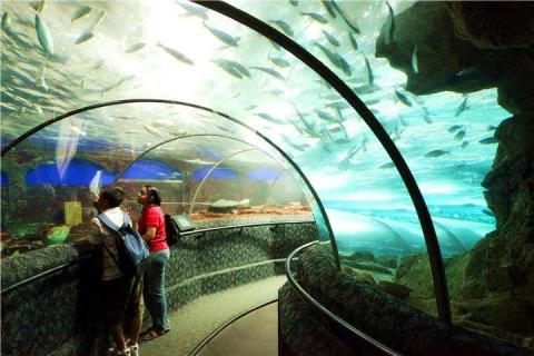 新加坡-【新加坡当地景点门票】S。E。A海洋馆电子门票(电子换票证)