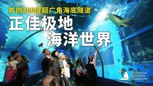 广州正佳极地海洋世界 成人票【日场】