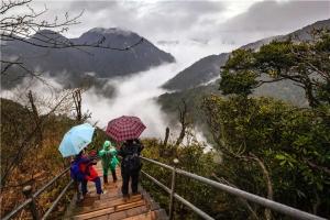 温泉-【汽车跨省】湖南2天*郴州莽山国家森林公园、高山森林温泉<枫狂季>