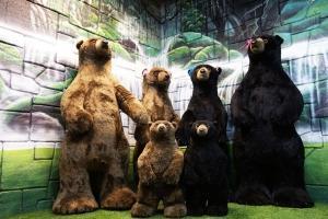 泰国-泰国【当地玩乐】代订芭提雅泰迪熊博物馆门票