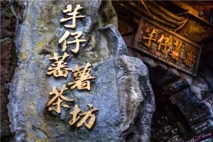 台湾-【当地玩乐】台北故宫/市区经典观光一日游(市区集中)