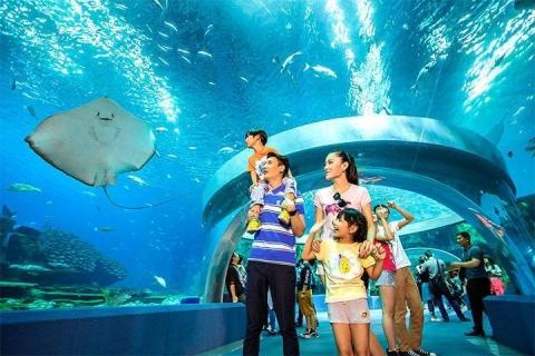 珠海-【乐园·休闲】珠海长隆海洋王国、圆明新园、澳门环岛游2天*住市区高级