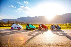 大理-【大理当地玩乐】环洱海SMART 敞篷车自驾+跟拍+含纳西族地道美食+扎染体验2天游