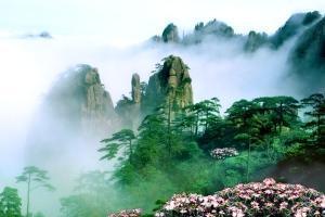 黄山-【典·全景】上海、杭州、黄山6天*外滩*西湖*双飞<入住一晚黄山风景区>