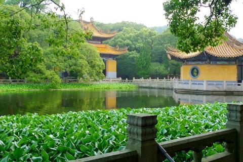 宁波杭州上海双飞4天.普陀山.鲁迅故居.上海.一晚入住乌镇景区