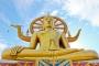 泰国【当地玩乐】代订曼谷考艾国家公园一日游*等待确认