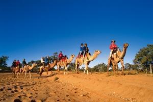 澳大利亚-【当地玩乐】澳洲乌鲁鲁寂静之声星空之旅3日游