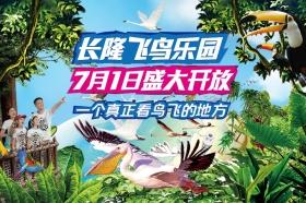 广州长隆飞鸟乐园门票 成人(原鳄鱼公园)