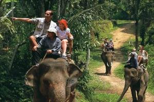 巴厘岛-巴厘岛大象野生动物园上午半日游·等待确认