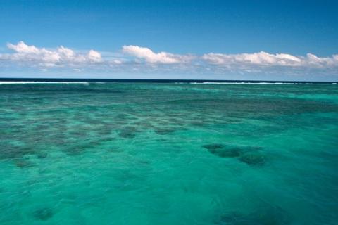 -斐济 珊瑚猫号双体船Sailing一日游(含浮潜装备 迪那桡出发)  .等待确认