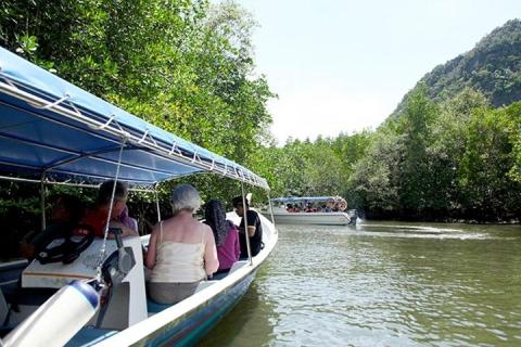 沙巴-【沙巴一日游】克里亚士湿地生态之旅