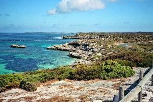 珀斯-【当地玩乐】单订澳洲珀斯罗特尼斯岛船票
