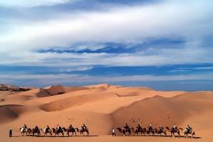 内蒙古-【尚·深度】呼和浩特、大同、双飞5天*辉腾锡勒草原*响沙湾沙漠*云冈石窟<最美花海草原辉腾锡勒>