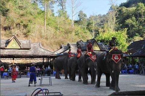 西双版纳-云南西双版纳西双版纳4天3晚跟团游 勐仑植物园+野象谷+原始森林公园(等待确认)