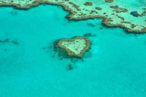 澳洲(汉密尔顿岛、悉尼、墨尔本)9天*纯玩*浪漫之旅|跟团游