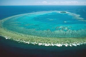 澳大利亚-【当地玩乐】澳洲艾尔利海滩四日游(哈迪大堡礁游船)