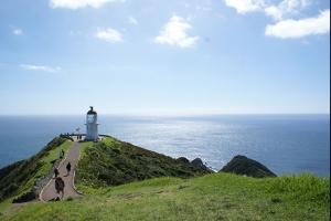 北岛-【当地玩乐】新西兰岛屿湾(沙滩动感之旅+探索岛屿湾)两日组合