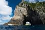 【当地玩乐】新西兰北岛岛屿湾3日游