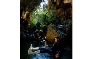 新西兰-新西兰蒂阿瑙萤火虫洞+米福峡湾2天1晚自由行套餐(皇后镇往返,夜宿蒂阿瑙)  .等待确认
