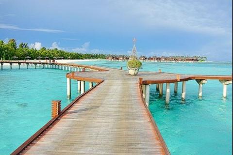 马尔代夫-【自由行】马尔代夫(欢乐岛)6天*机+酒*广州往返*等待确认<含早午晚餐、性价比高、快艇上岛>