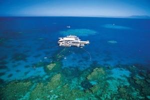 澳洲-【典·博览】澳洲(悉尼、凯恩斯、布里斯本、黄金海岸)8天*热带魅力*广州或香港往返<大堡礁,自然遗产热带雨林,奇趣捉蟹,亲近动物>