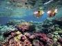 【跟团游】大堡礁 热带雨林、黄金海岸三大乐园、悉尼歌剧院入内9天*全程豪华酒店*北京往返*等待确认